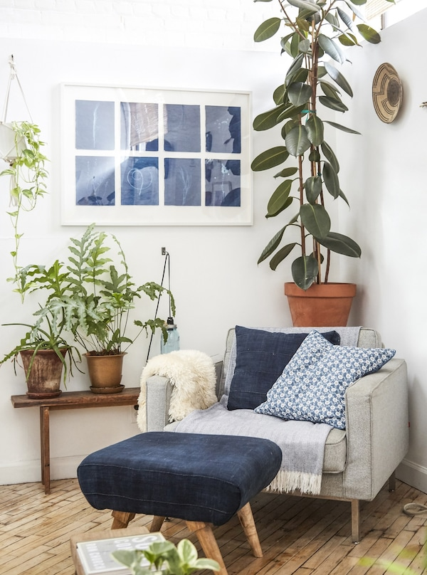Plants and an armchair fill a corner of the living room.