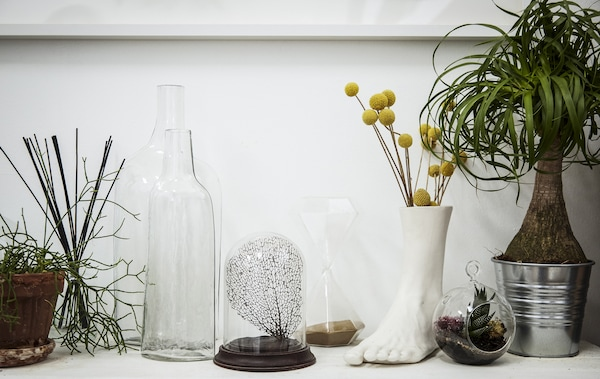 Plants displayed in different pots and vases.