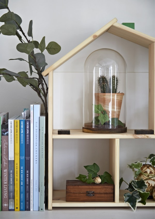 Plants displayed on a doll's house wall shelf, next to a row of books.