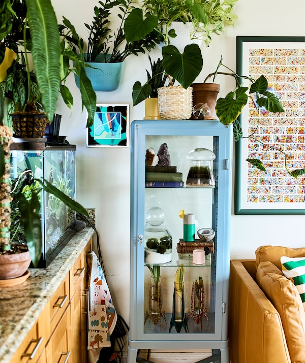 Plants of different sizes in a fish tank, on the wall and in a glass cabinet, plus a leather sofa and framed picture.