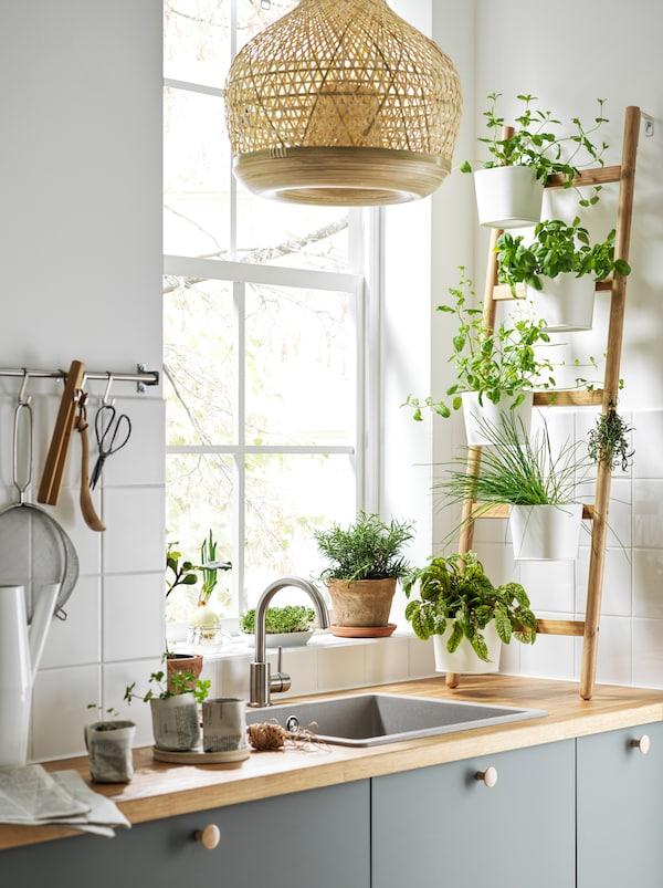 Pokraj osvijetljenog prozora i sudopera na kuhinjskoj radnoj ploči uz zid je naslonjen SATSUMAS stalak za biljke pun začinskog bilja.