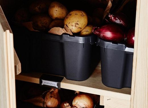 Pommes de terre et oignons rangés dans des boîtes en plastique noir