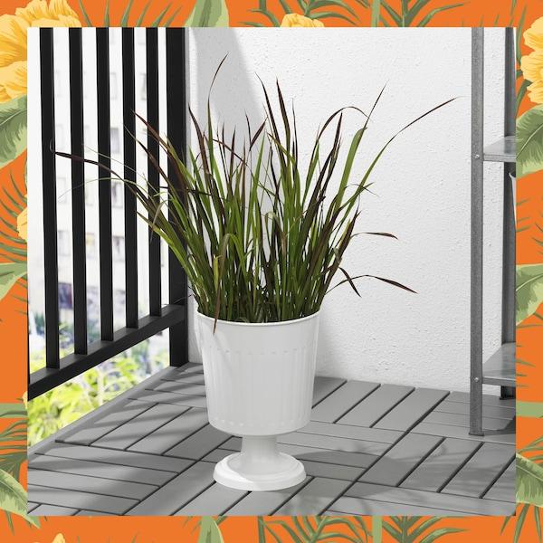 pot à pied pour plante