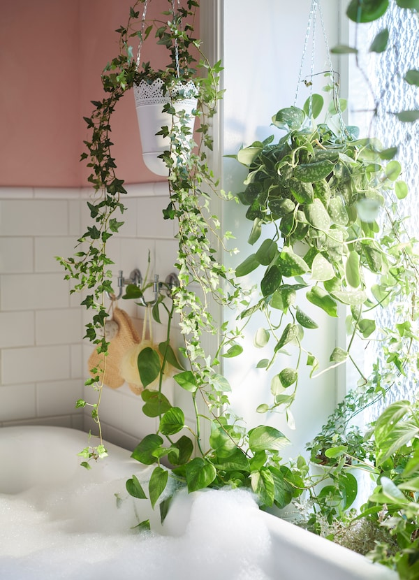 Provide a pinch of greenery to your bathroom by putting them in IKEA SKURAR hang planters. The off-white pots have a doily design.