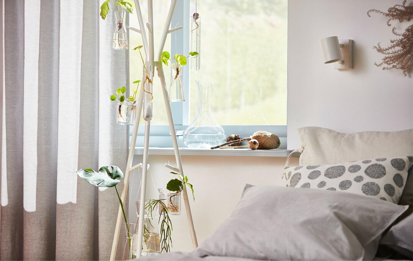 قبعة EKRAR بيضاء وعلاقة معطف مزينة بنباتات مزروعة في المنزل، أمام نافذة.