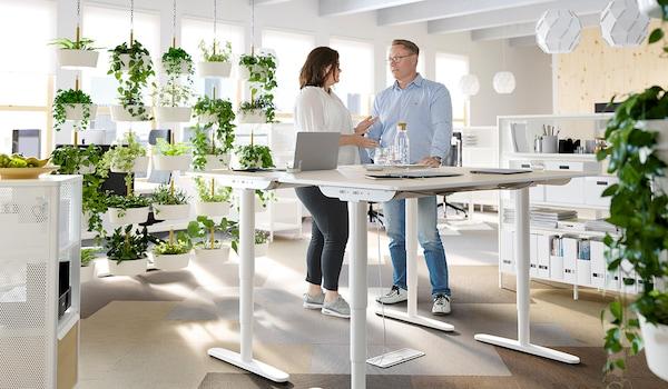 Ratgeber Bürobeleuchtung: richtiges Licht am Arbeitsplatz