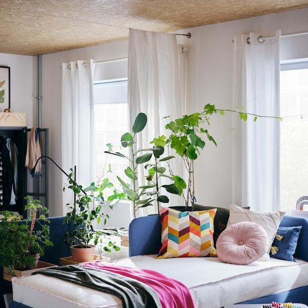 Raum mit einem BLÅKULLEN Bett mit bunten Kissen, einem Couchtisch, Fenstern mit Gardinen und Zimmerpflanzen.