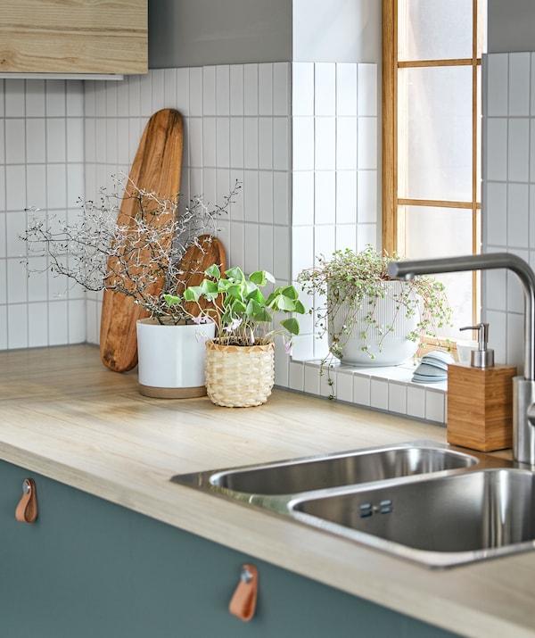 Raznovrsna grupa biljaka u ukrasnim saksijama, na kuhinjskoj radnoj ploči, pored osunčanog simsa.