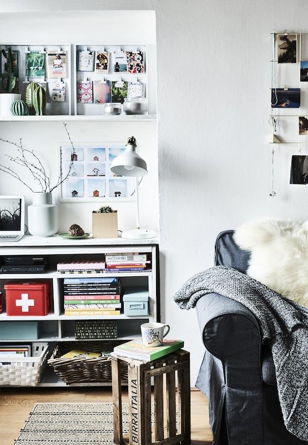 Regale, ein Couchtisch und ein Sofa.