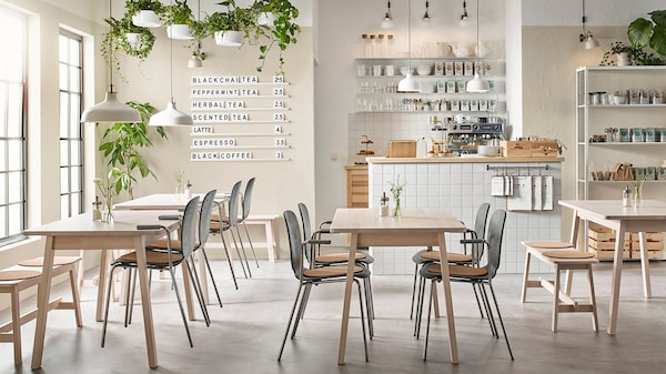 Restaurant with chairs, table, wall and plants