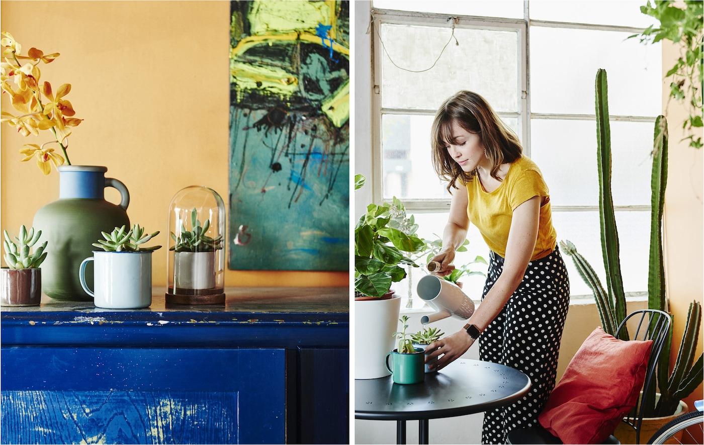 Ruukut sinisellä sivupöydällä oranssia seinää vasten sekä kukkia kasteleva nainen.