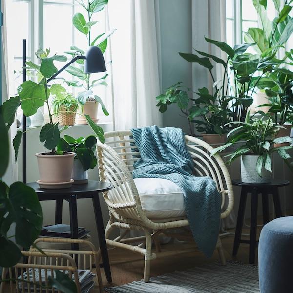Sala iluminada com uma poltrona BUSKBO e uma almofada em branco entre duas janelas, rodeada por plantas verdes exuberantes.