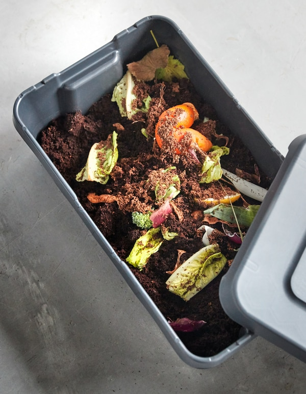 Salatreste in etwas Erde werden zu einem Kompostansatz, u. a. mit KLÄMTARE Box mit Deckel für drinnen und draußen in Dunkelgrau.