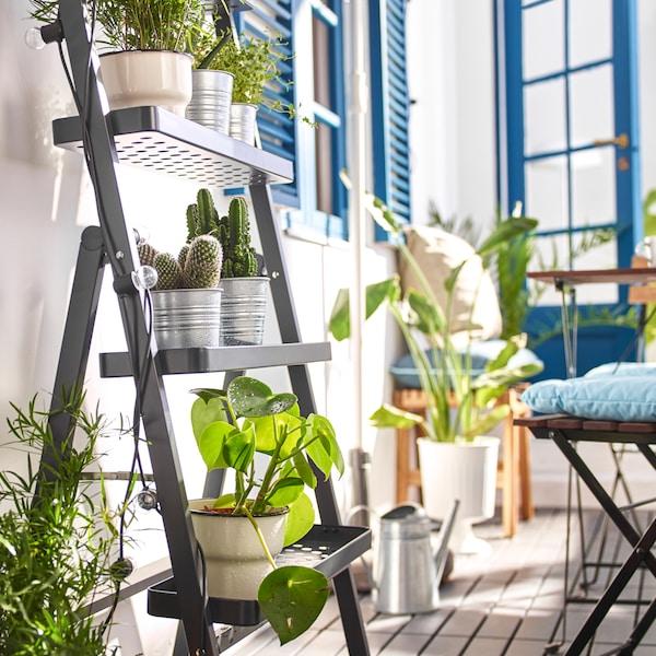 SALLADSKÅL piedistallo per piante