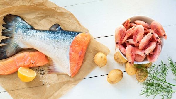 Salmon dan udang