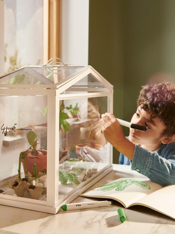صبي يقوم بتحديد ارتفاع النباتات بقلم للوح الكتابة MÅLA على الجزء الجانبي لصوبة زجاجية SOCKER.