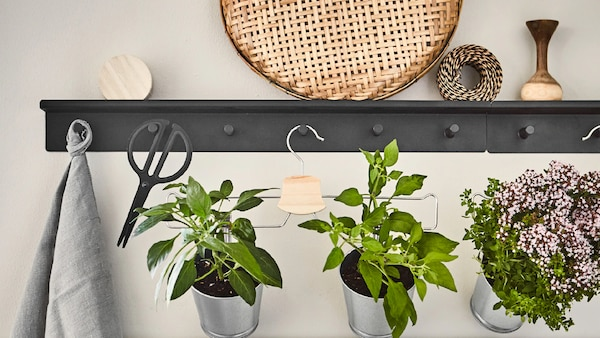 Schaffe einen Gemüsegarten mit Pflanzentöpfen, die an einem Hosenbügel befestigt sind! Hänge ihn einfach an eine Wandschiene mit Haken.