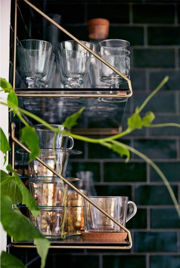 Se muestran vasos en un estante de metal y vidrio. Hay una planta en primer plano y una pared de azulejos negros en el fondo.