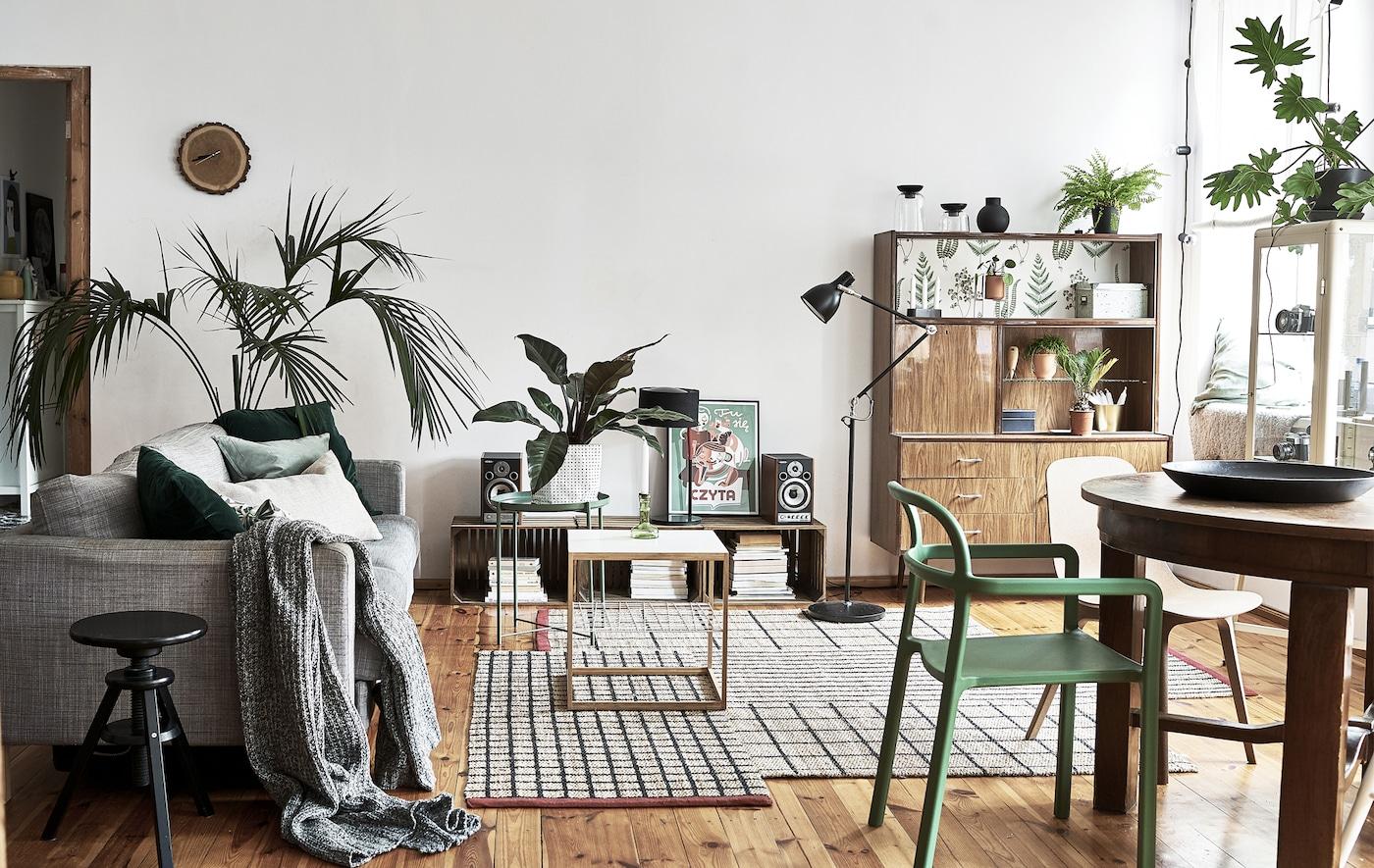 Séjour décloisonné avec table, chaises, plantes, un canapé et des buffets.