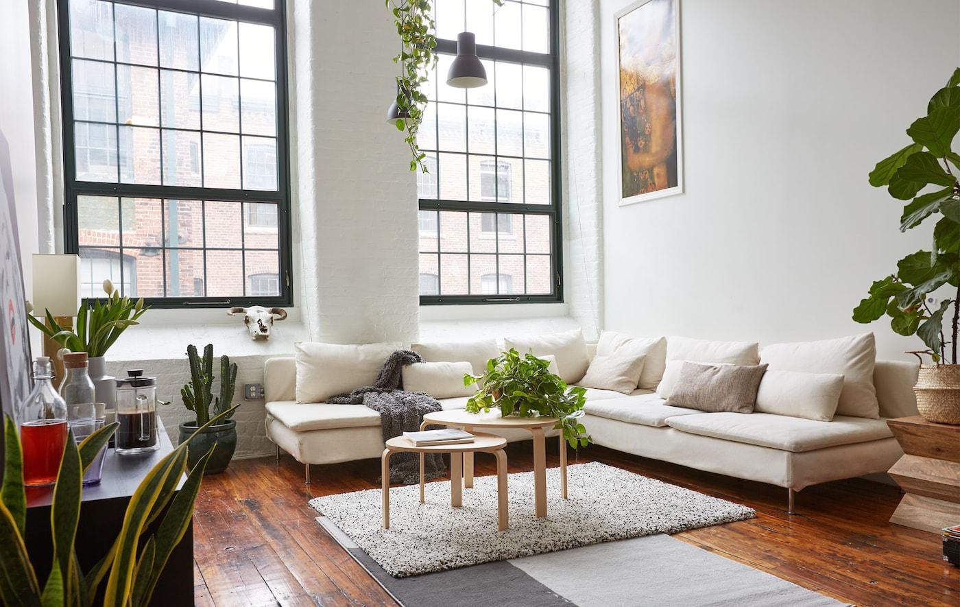 Séjour monochrome caractérisé par des plafonds hauts et de grandes fenêtres.