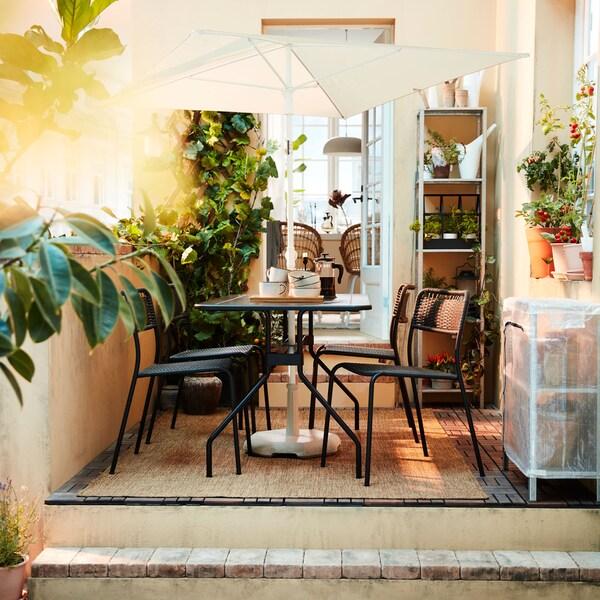 Sezon na balkon i ogród