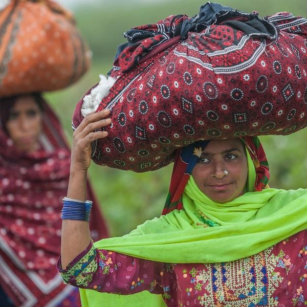 収穫した綿花が入った大きな風呂敷包みを頭上に乗せて運ぶ、カラフルな装いの女性2人。