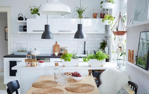 A family-friendly open-plan kitchen - IKEA