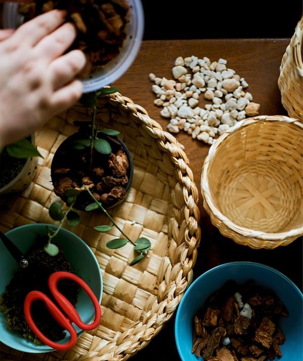 سلات منسوجة على طاولة عليها أواني من مستلزمات النباتات.