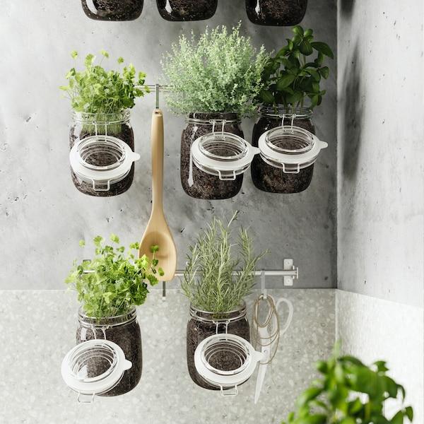 Słoiki KORKEN z zasadzonymi ziołami wiszące na szynach ściennych FINTORP.