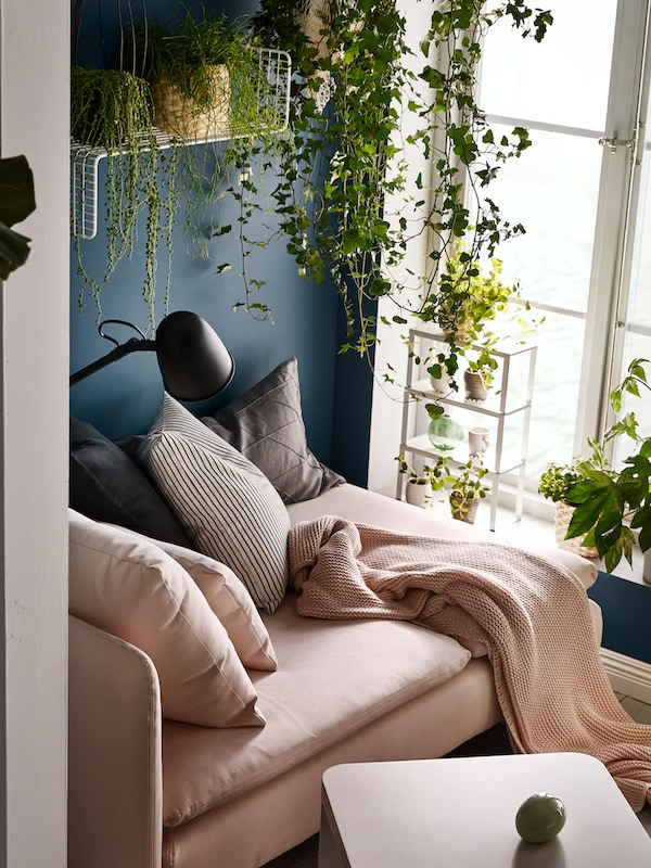 Small space living room with plants draping down off high shelves