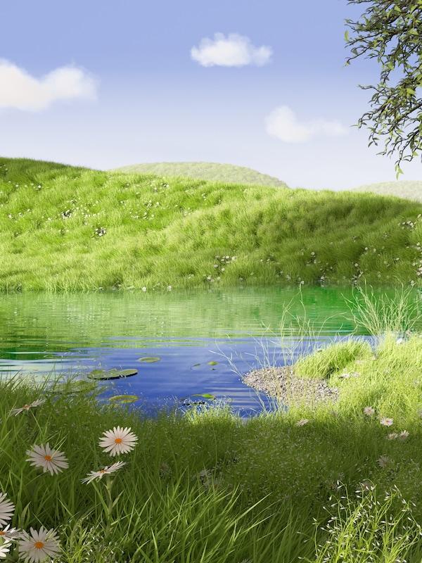 Sob um céu azul encontra-se um monte verdejante refletido num lago com vegetação alta com flores brancas e amarelas na margem.
