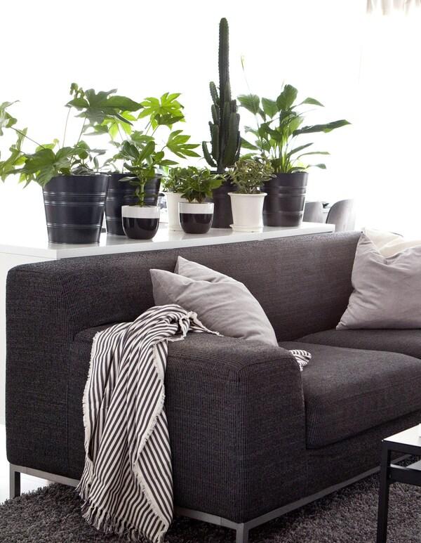 Sofá gris oscuro con cojines una manta a rayas y un aparador con plantas en maceteros.