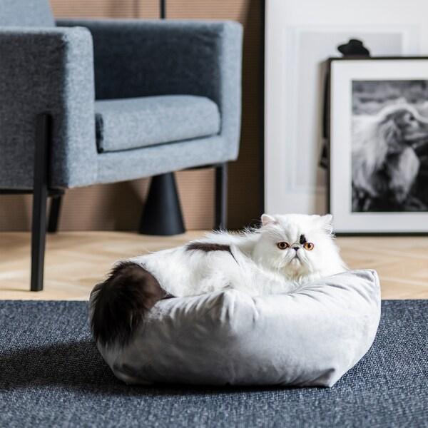 Soggiorno con poltrona, quadri, pavimento in parquet; gatto sdraiato su un pouf posizionato su un tappeto - IKEA