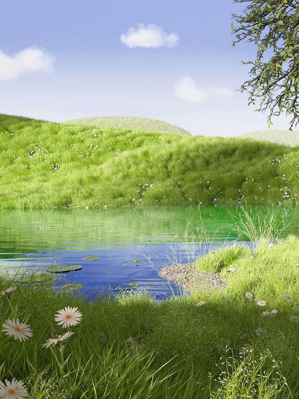 Sous un ciel bleu, une colline herbeuse se reflète dans les eaux d'un lac dissimulé par de l'herbe haute et des fleurs jaune et blanc.