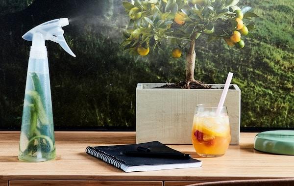 Sprühflasche mit Gurkenschalen auf einem Tisch mit einem kleinen Bonsai-Baum und einem Getränk