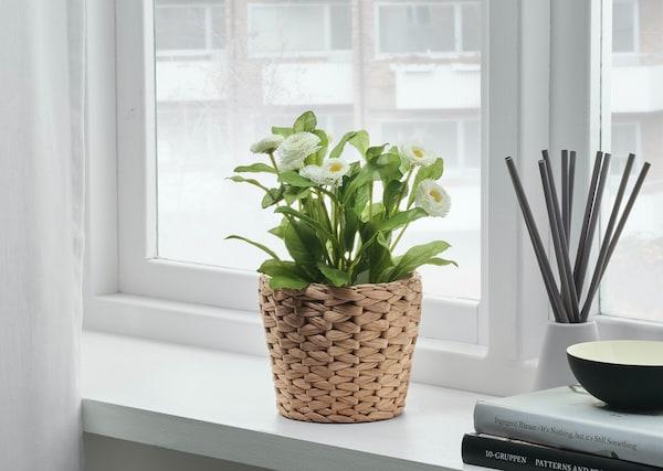 Стильное зеленое кашпо с плетистым растением на прикроватной тумбчоке