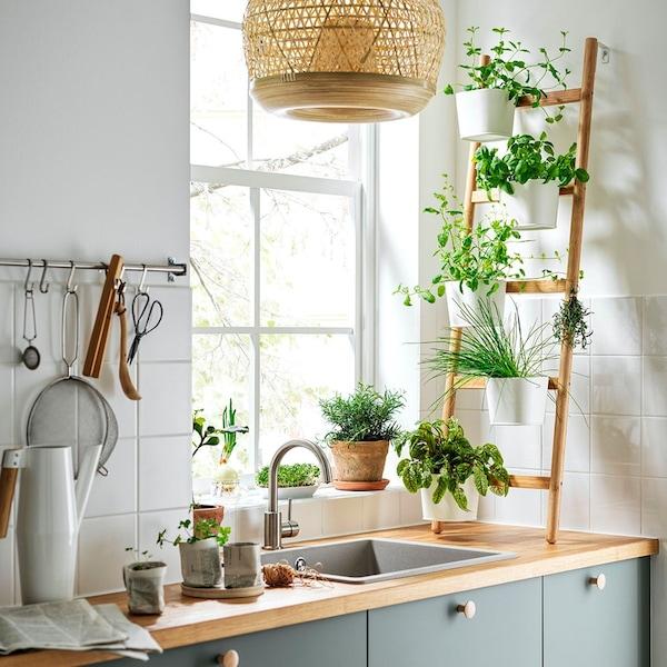 Stojak na zioła SATSUMAS przy oknie na szafkach kuchennych z zielonymi frontami.