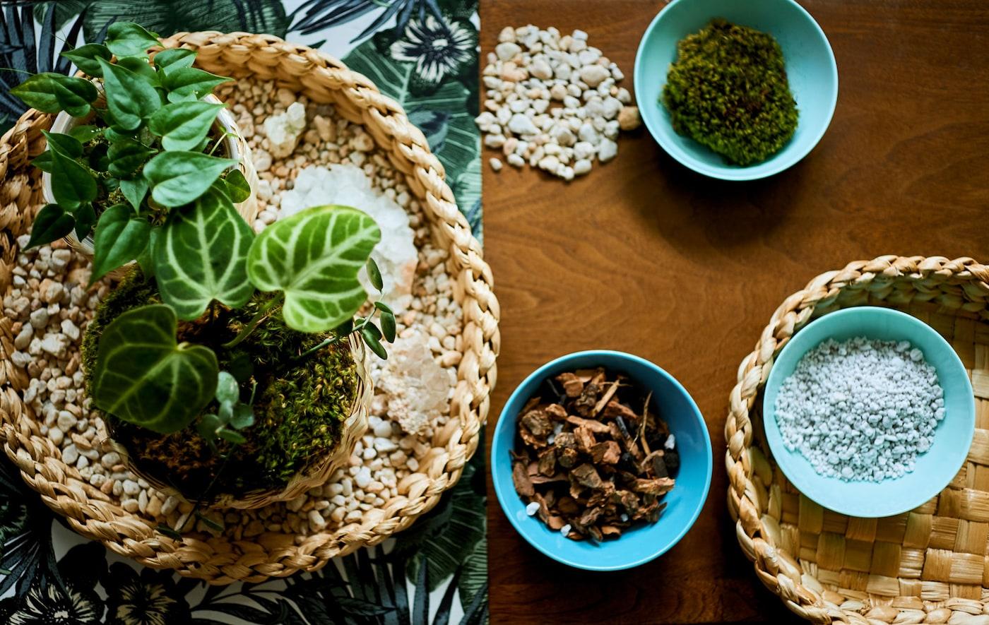Stol s komadom tkanine s uzorkom biljaka, poslužavnik s minijaturnim ukrasom i zdjelama materijala za uzgoj.
