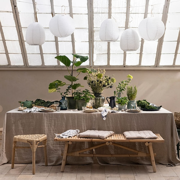 Style your home with indoor plant decor. Tips to turn your home into a lush oasis.