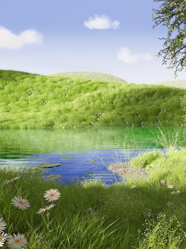 Sub un cer albastru, un deal acoperit cu iarbă se reflectă într-un eleșteu dincolo de fire de iarbă înaltă cu flori albe și galbene.