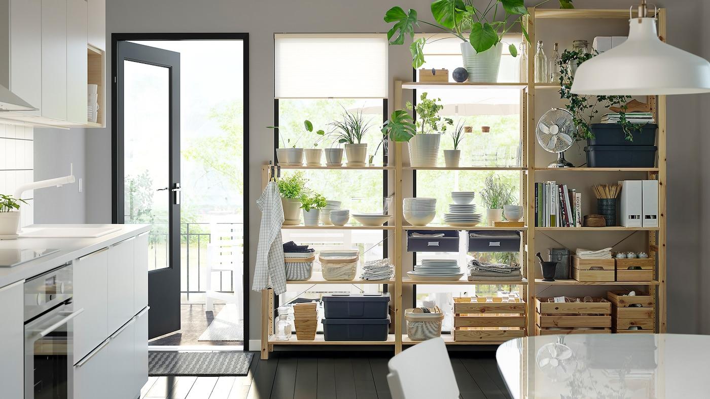 Svart-hvitt kjøkken med planter, dekketøy og permer pent plassert på åpne trehyller foran vinduer.