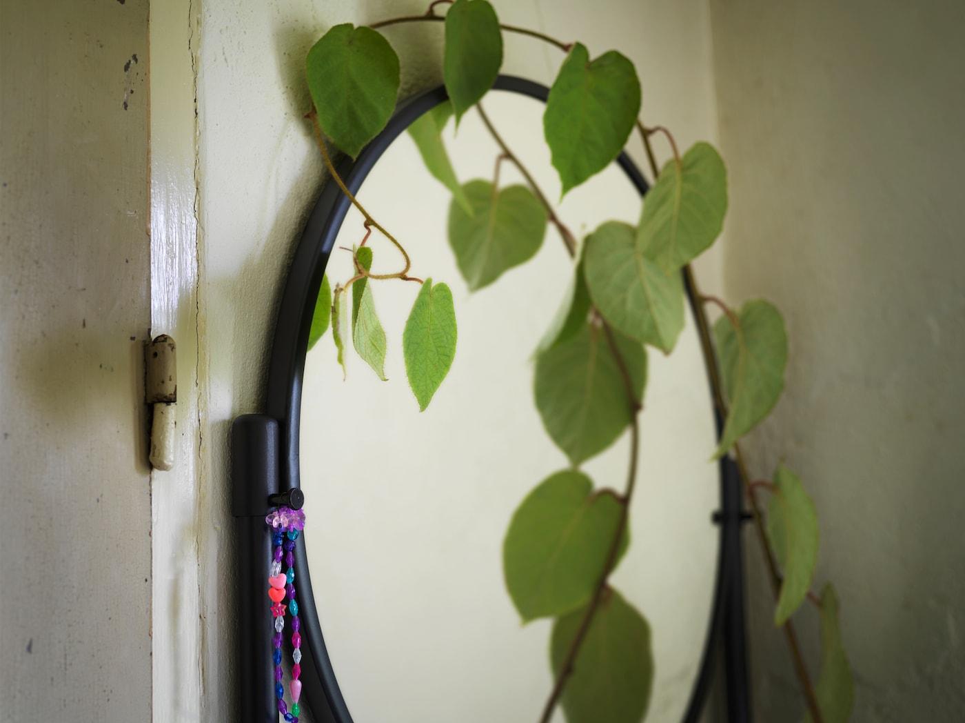 صورة مقربة لمرآة مستديرةلخزانةKORNSJÖ سوداءونبات متسلق على جانبها.