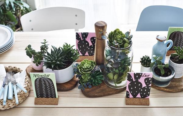 Table en bois clair décorée de plantes grasses en pots.