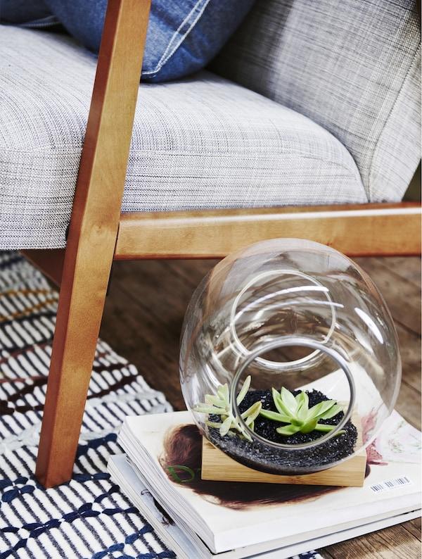 Terrariuma sofa gris baten ondoan, aldizkari-pila baten gainean.