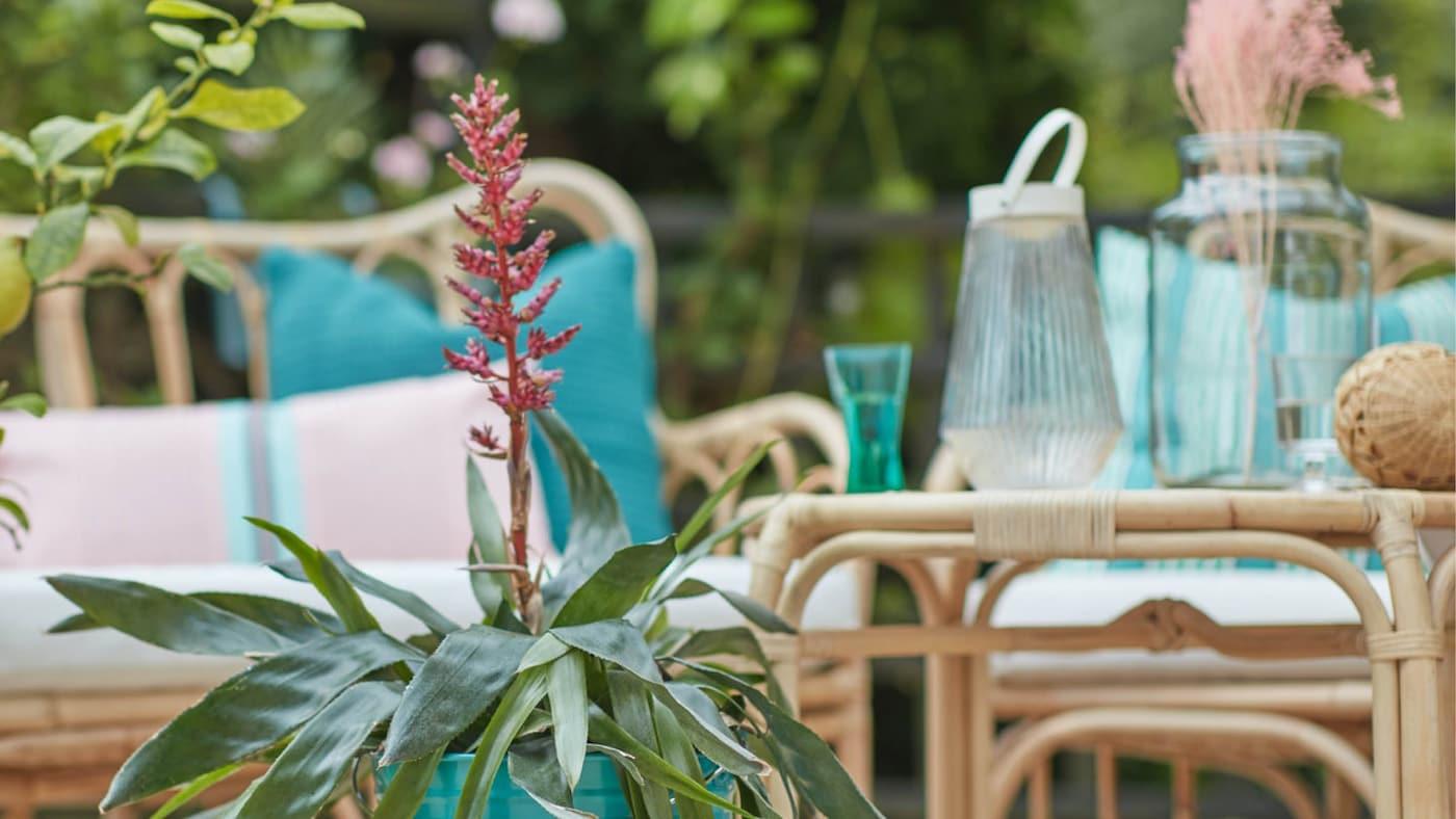 terras in een groene omgeving met rotanmeubelen gedecoreerd met roze en turquoise kussens en een turquoise bloempot met plant en gieter op de voorgrond.