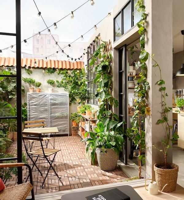 Terrazzo con pedane da esterno RUNNEN in legno e con tante piante di varie dimensioni all'interno di vasi disposti lungo le pareti.