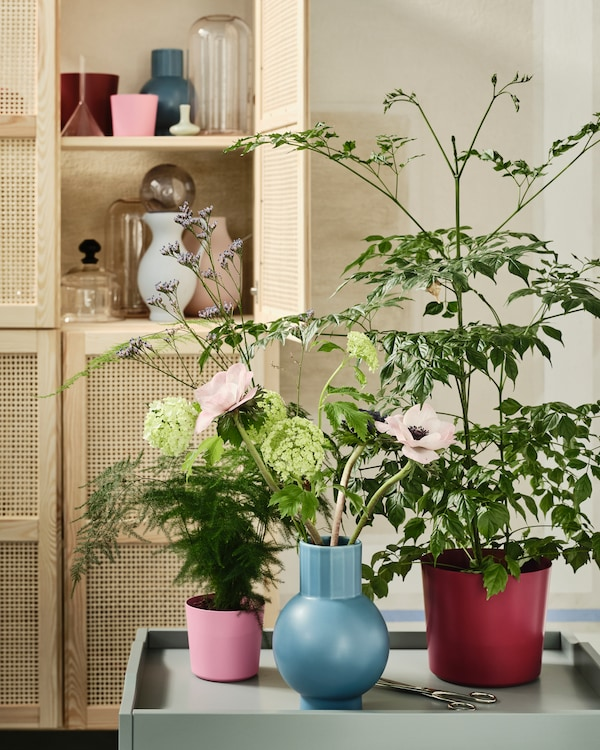 The colourful OMFÅNG plant pots and vase filled with plants and flowers standing on a table with storage in the background.