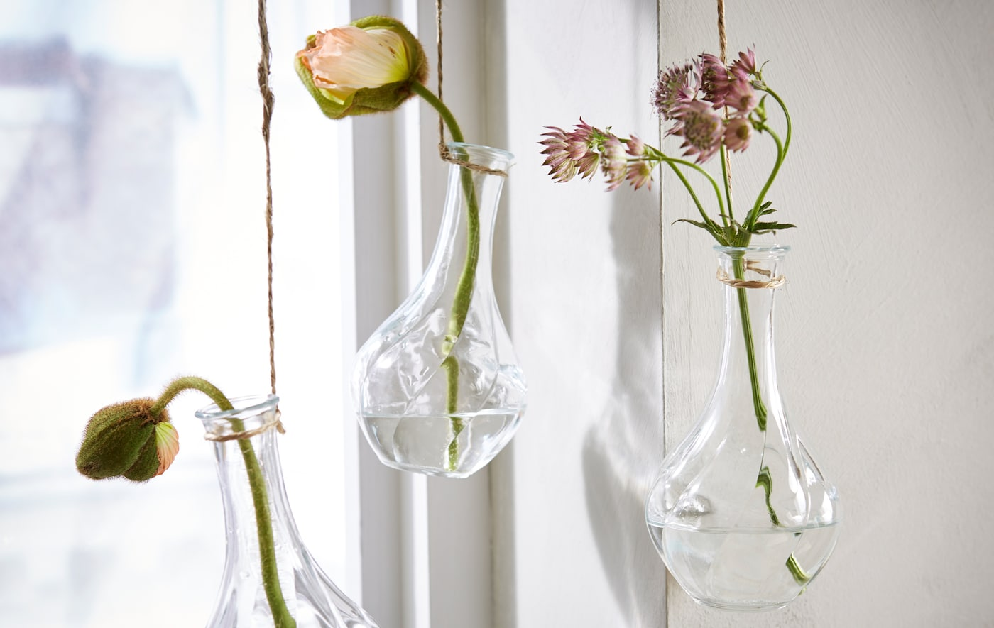 Three glass vases with a single flower in each, hang by a window for a colourful still-life.