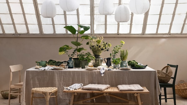 Tips for styling with decorative plants.