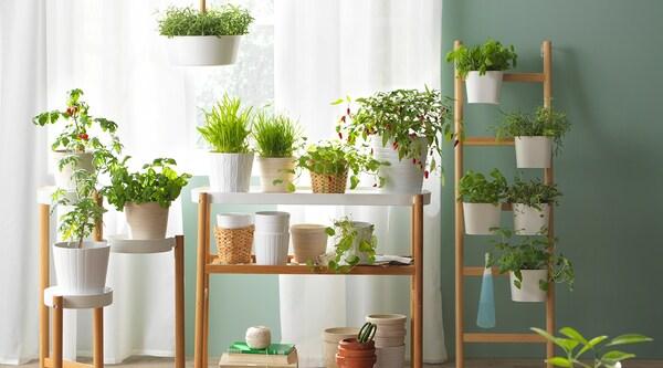 Trois supports pour plantes SATSUMAS en bambou et en plastique blanc, remplis de plantes vertes.